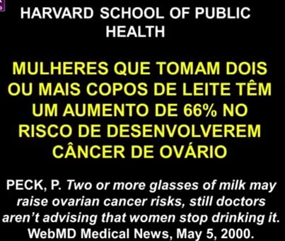 leite10