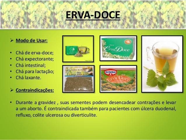 ervas-medicinais-erva-doce-ch-verde-ch-preto-e-pariri-5-638