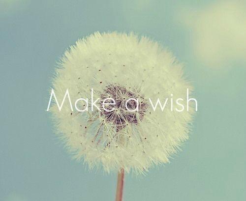 183404-make-a-wish